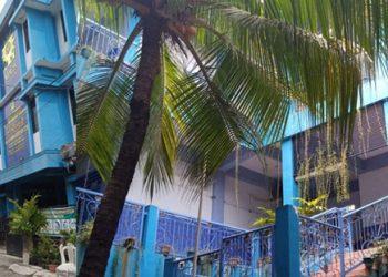 Tampak Depan MI 25 Surabaya dan Pohon Kelapa Gading di halaman tengah sekolah menjulang hingga ke lantai 3 membuat pemandangan asri dan sejuk